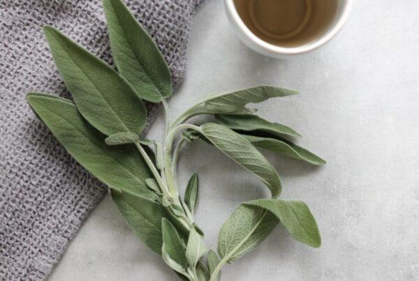 benefici delle piante aromatiche